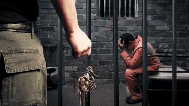 Photo of Google'dan Ceza Almanıza Neden Olacak 10 Kötü Link Türü